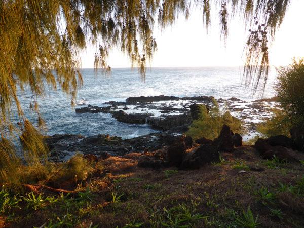 Circuit à Hawaii exploration de kauai durant notre séjour organisé par routedhawaii.com