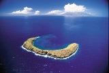 Séjour à Hawaii découverte de Molokini pendant nos vacances organisées par routedhawaii.com
