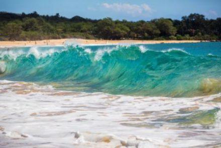 Voyage à Hawaii profiter des vagues au cours du circuit organisé par routedhawaii.com