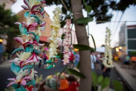 sejour-voyage-routedhawaii-circuit-hawaii-lei